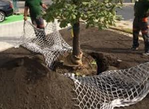 Irrigation souterraine Hydro rétenteur