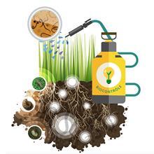 Biosolution pour le gazon
