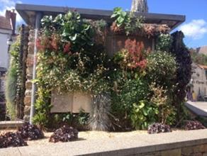 Façade végétalisable ou jardin vertical