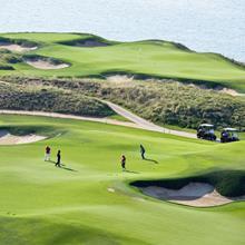 Gazon golf