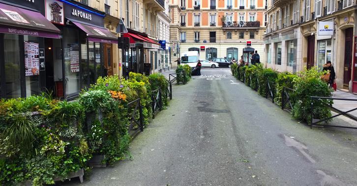 Bac à fleurs - Photo