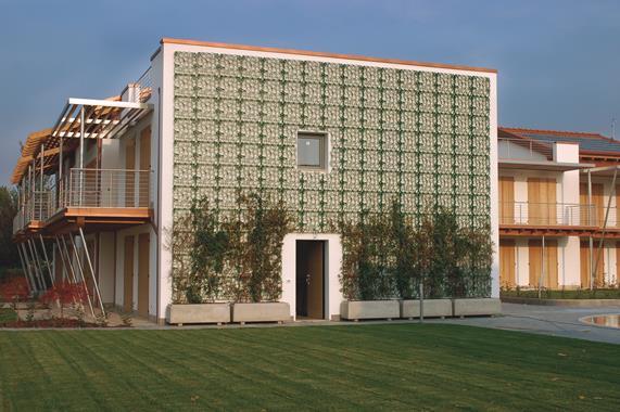 Élément modulaire pour murs végétalisés - Photo