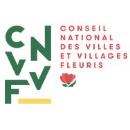 CNVVF